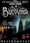 BUCOVINA lanseaza noul album pe 12 decembrie la Arenele Romane