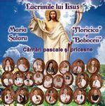 Maria Salaru Lacrimile lui Iisus