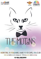 Concert The Motans