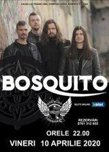 Ramnicu Valcea: Concert Bosquito