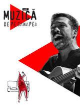 Concert online: Adrian Despot