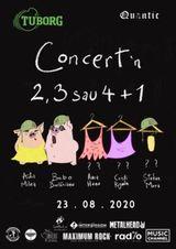 Concert in 2, 3 sau 4 + 1 - Ada Milea, Bobo Burlacianu si posibil: Anca Hanu, Cristi Rigman si Stefan Mura