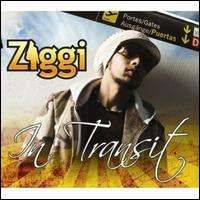 Ziggi - In Transit