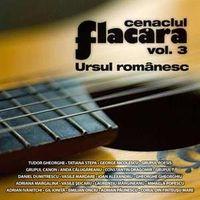 Cenaclul Flacara - Cenaclul Flacara Vol 3