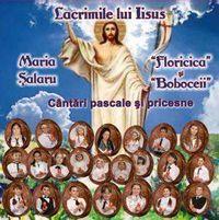 Maria Salaru - Lacrimile lui Iisus