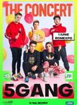 5GANG - Showul Anului 2020 / The Concert / 1 iunie - Bilet de o zi