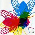 Irmin Schmidt & Kumo - Flies Guys And Choirs (DVD)