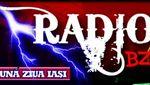 Radio BZI