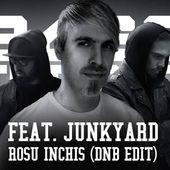 Download Bass Turbat feat. Junkyard - Rosu Inchis (Drum & Bass Edit)