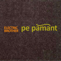 Electric Brother - Pe pamant