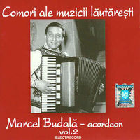 Marcel Budala - Comori ale muzicii lautaresti Vol. 2