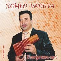 Romeo Vaduva - Evergreen-uri