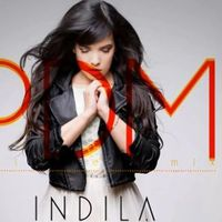 Download Indila - Derniere Danse (Paul Damixie Remix)