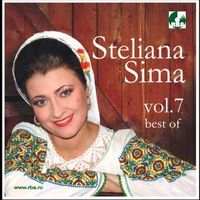 Steliana Sima - Best of vol. 7